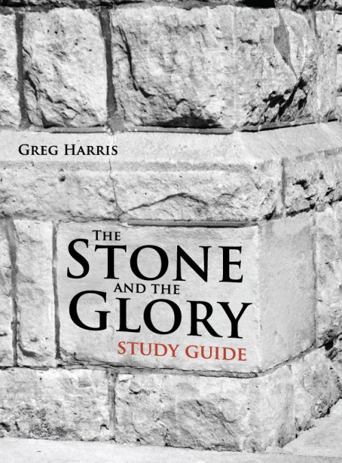 The Stone and the Glory STUDY GUIDE